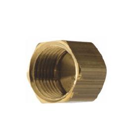 Brass FNPT Cap